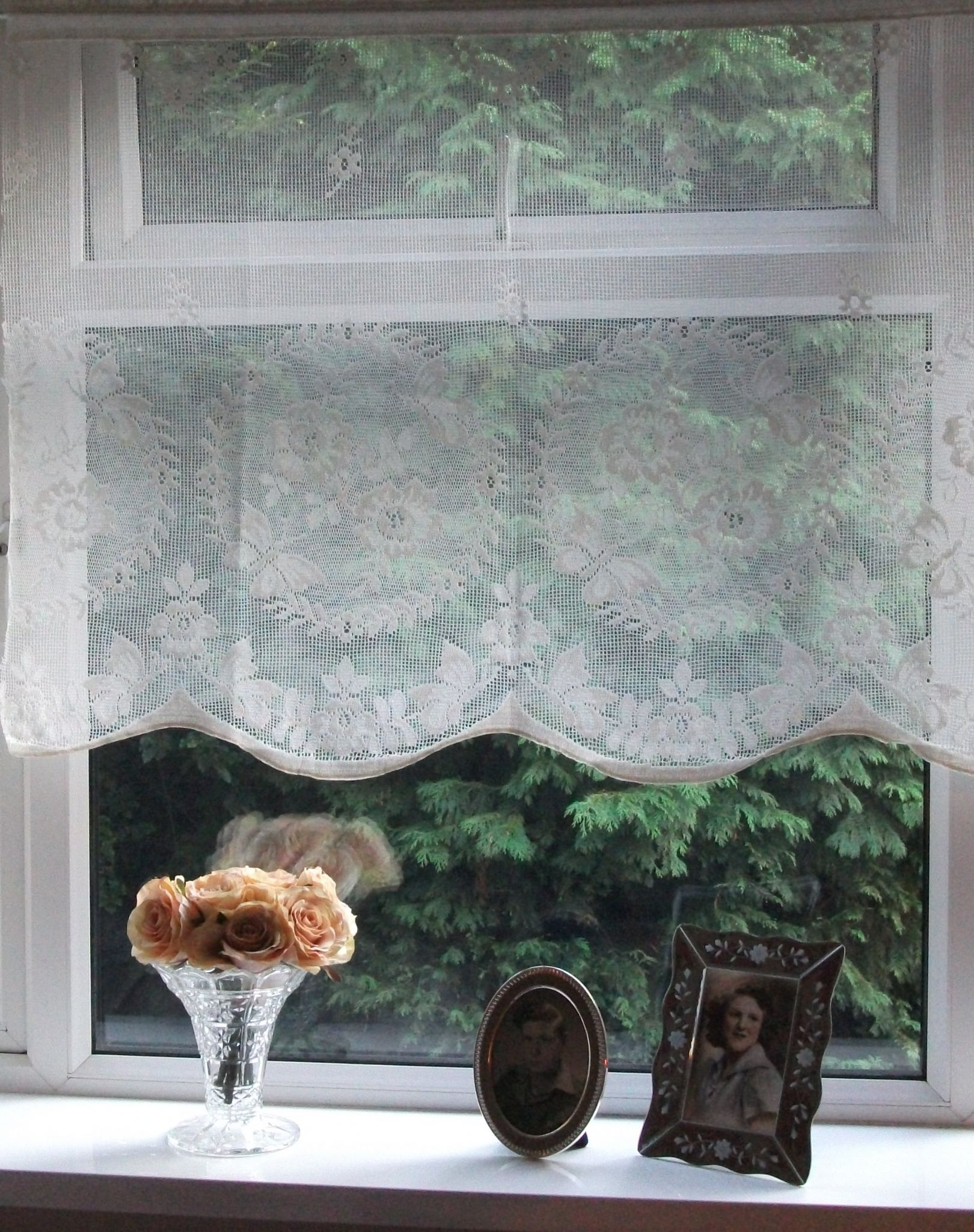 Butterfly lace curtains